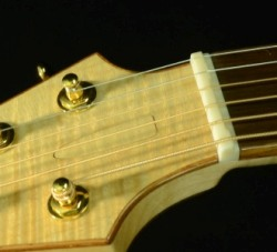 The Stealth Truss Rod Cover and Compensated Nut